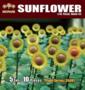 Diopark-35001-Sunflower-1:35