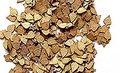 PLM282-Leaves-birch